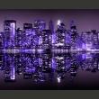 Fototapeta - American violet A0-F5TNT0041-P