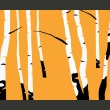 Fototapeta - Birches on the orange background A0-LFTNT0784