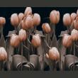 Fototapeta - Ladies among the flowers A0-LFTNT0536