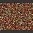 Fototapeta - Mozaika z kolorowego pieprzu A0-LFTNT0485