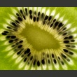 Fototapeta - owoce: kiwi A0-LFTNT0872