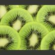 Fototapeta - Plasterki kiwi A0-LFTNT0867