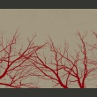 Fototapeta - Red-hot branches A0-F4TNT0014-P