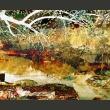 Fototapeta - River of life A0-LFTNT0651