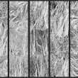 Fototapeta - Srebrny obłok A0-WSR10m517