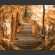 Fototapeta - Stairs to paradise A0-LFTNT0764