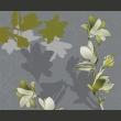 Fototapeta - Zielone magnolie A0-LFTNT0552
