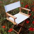 Krzesło Skagerak Directors Texteline S1900584