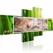 Obraz - Abstrakcja i bambus A0-N1181