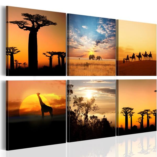 Obraz - Afrykańskie pejzaże (60x40 cm) A0-N1786