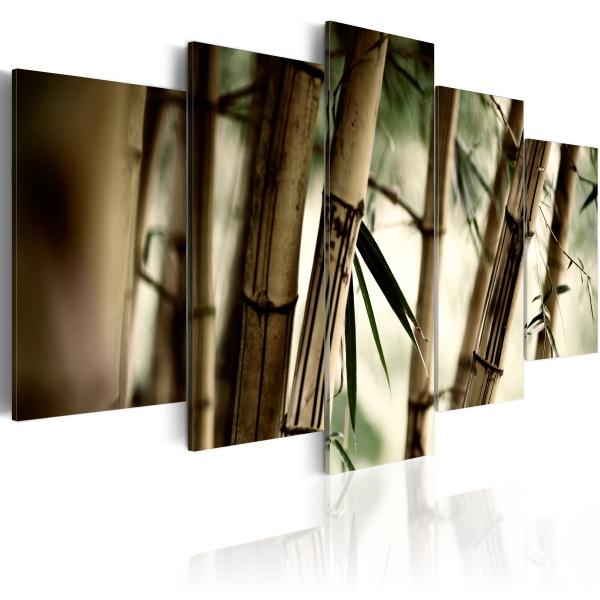Obraz - Azjatycki las bambusowy (100x50 cm) A0-N1371