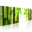 Obraz - Bamboo gate A0-N1206