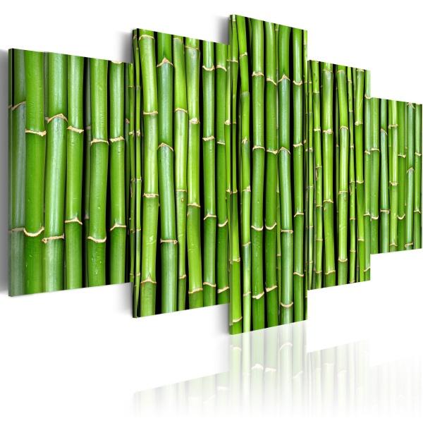Obraz - Bambus - harmonia i prostota (100x50 cm) A0-N1370