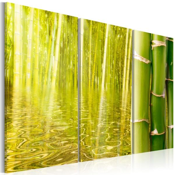 Obraz - Bambus w tafli wody (60x40 cm) A0-N1587