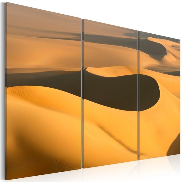 Obraz - Bezkresne piaski pustyni (60x40 cm) A0-N1467