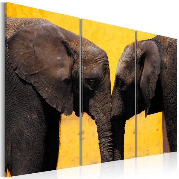 Obraz - Całus pary słoni (60x40 cm) A0-N1528