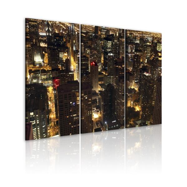 Obraz - Chicago (60x40 cm) A0-N1460