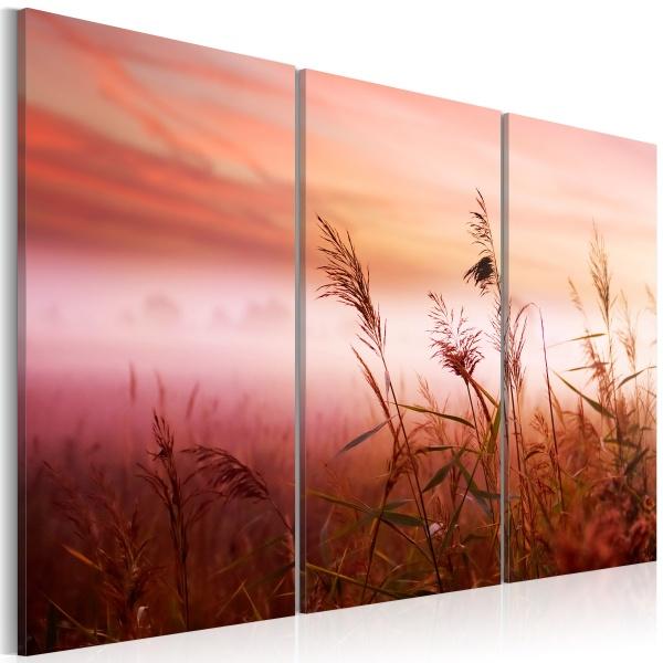 Obraz - Cicha łąka (60x40 cm) A0-N1391