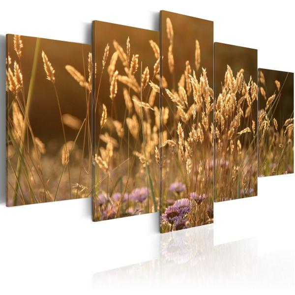 Obraz - Ciepły, letni dzień (100x50 cm) A0-N1595