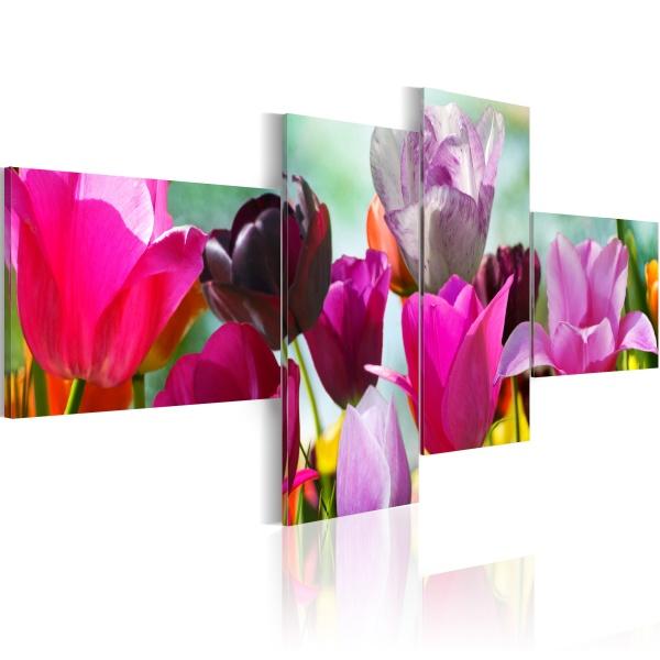 Obraz - Czar różowych tulipanów (100x45 cm) A0-N1417