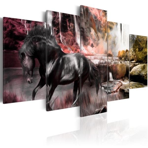Obraz - Czarny koń na tle karmazynowego nieba (100x50 cm) A0-N1663
