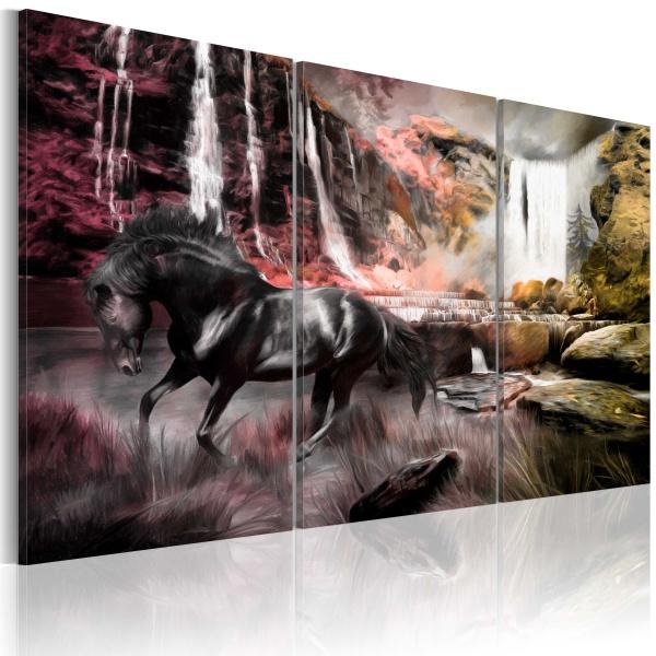 Obraz - Czarny koń przy wodospadzie (60x40 cm) A0-N1661
