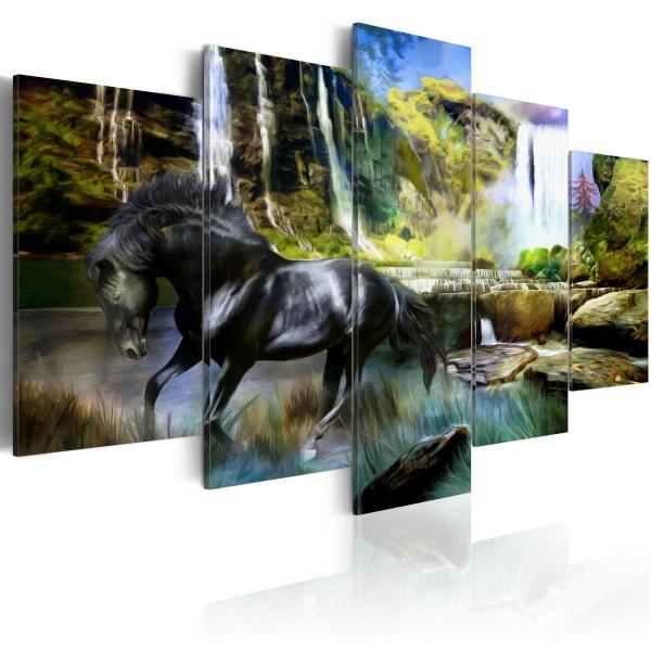 Obraz - Czarny rumak na tle rajskiego wodospadu (100x50 cm) A0-N1664
