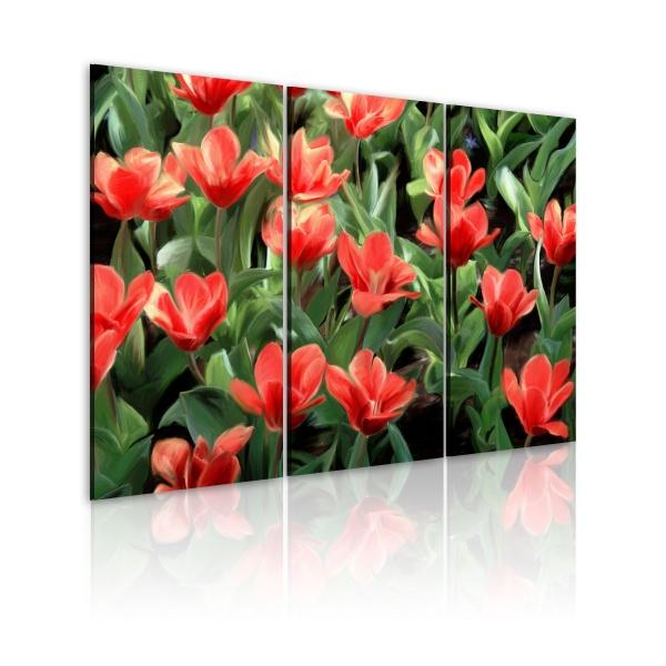 Obraz - Czerwone tulipany w rozkwicie (60x40 cm) A0-N1640