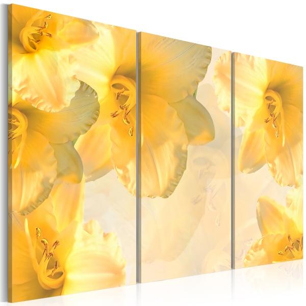 Obraz - Delikatne lilie w odcieniu żółtym (60x40 cm) A0-N1446