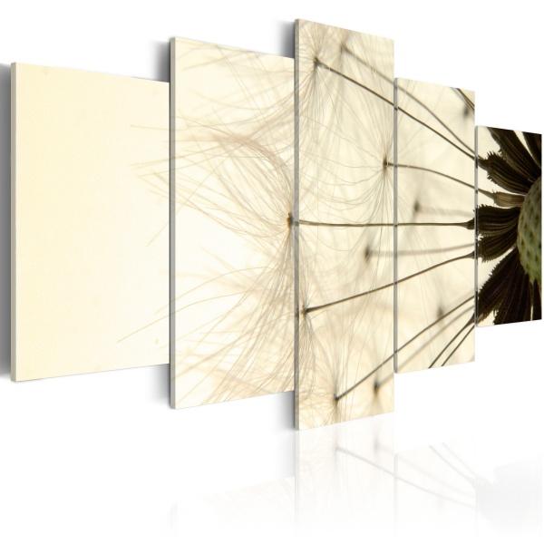Obraz - Delikatne płatki dmuchawca (100x50 cm) A0-N1449