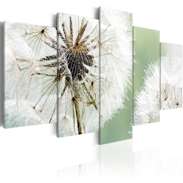 Obraz - Dmuchawce czekające na wiatr (100x50 cm) A0-N1410
