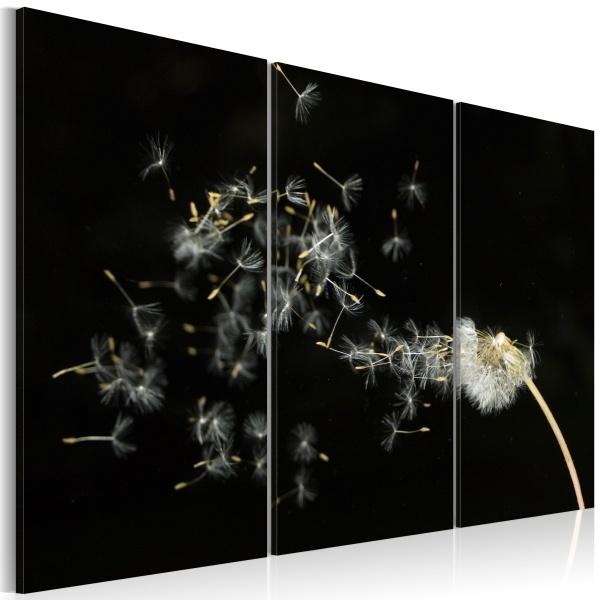Obraz - Dmuchawce - ulotność chwil (60x40 cm) A0-N1407