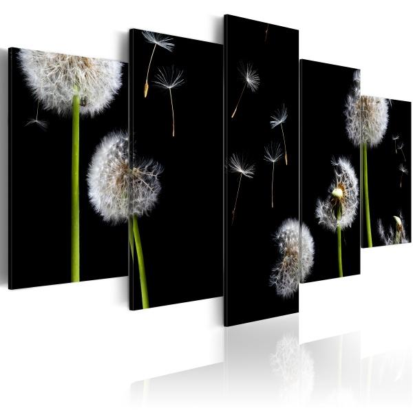 Obraz - Dmuchawiec - ku wolności (100x50 cm) A0-N1490