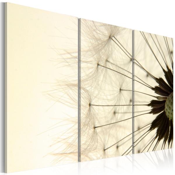 Obraz - Dmuchawiec - lekkość i ulotność (60x40 cm) A0-N1448