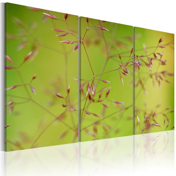Obraz - Drobniutkie kwiatuszki (60x40 cm) A0-N1594
