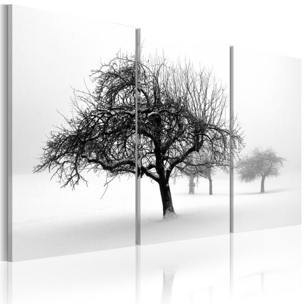Obraz - Drzewa zanurzone w bieli (60x40 cm) A0-N1389