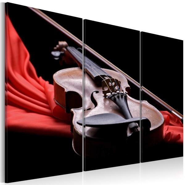 Obraz - Dźwięk skrzypiec (60x40 cm) A0-N1456