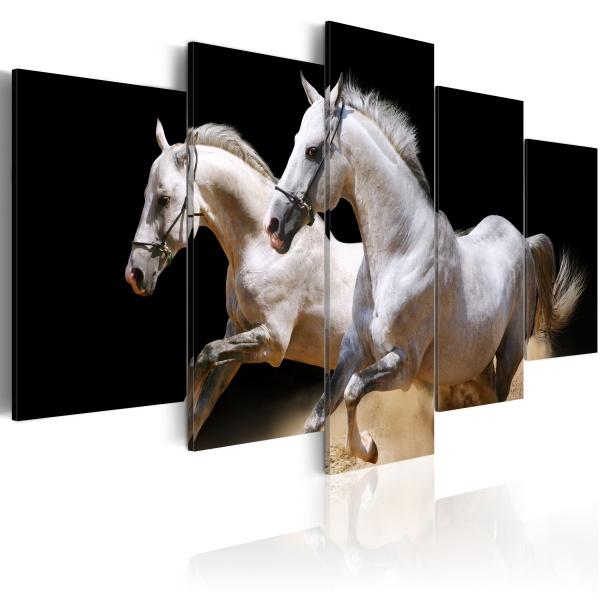 Obraz - Galop - wolność i moc (100x50 cm) A0-N1525