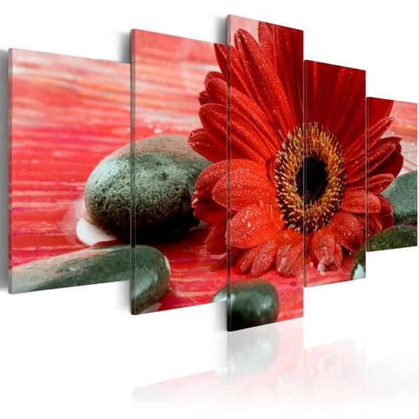 Obraz - Gerbera i kamienie Zen (100x50 cm) A0-N1423