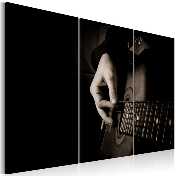Obraz - Gitarzysta (60x40 cm) A0-N1508