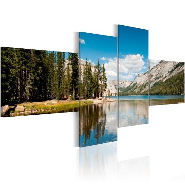 Obraz - Górskie powietrze (100x45 cm) A0-N1557