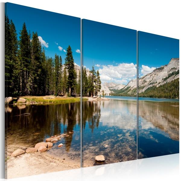 Obraz - Góry, drzewa i krystalicznie czyste jezioro (60x40 cm) A0-N1556