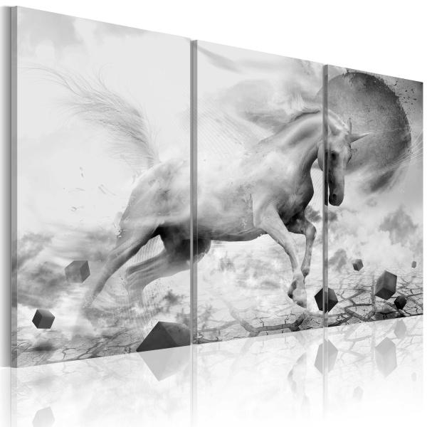 Obraz - Jednorożec na skraju świata (60x40 cm) A0-N1655