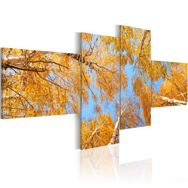 Obraz - Jesień w oczach krasnala (100x45 cm) A0-N1471