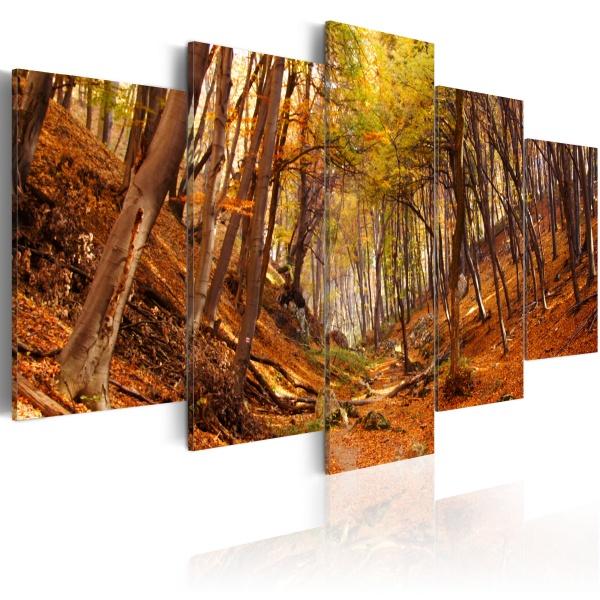 Obraz - Jesień w oranżu (100x50 cm) A0-N1565