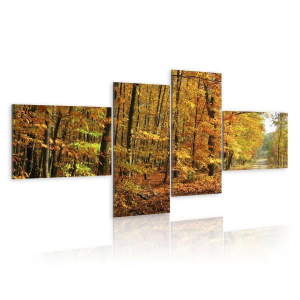 Obraz - Jesienna alejka pełna słońca (100x45 cm) A0-N1583
