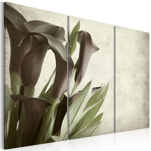 Obraz - kalie - vintage (60x40 cm) A0-N1602