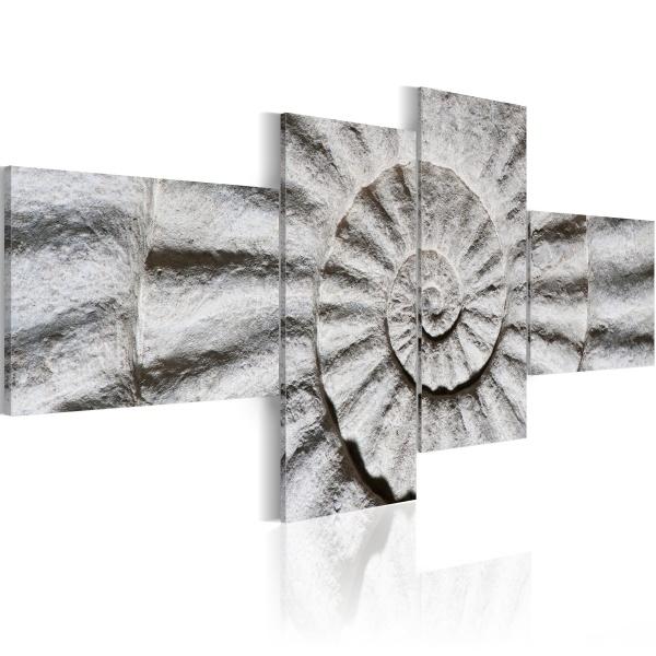 Obraz - Kamienna muszla (100x45 cm) A0-N1366