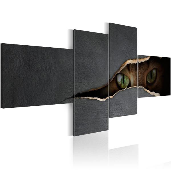 Obraz - Kocie oczy (100x45 cm) A0-N1652
