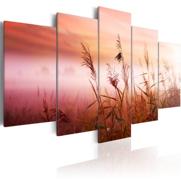 Obraz - Łąka witająca nowy dzień (100x50 cm) A0-N1392